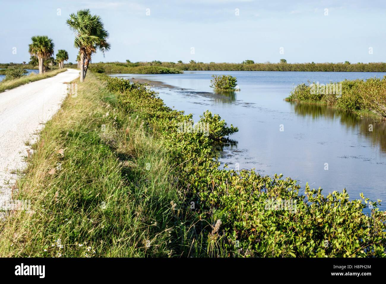 Florida Merritt Island Merritt Island National Wildlife Refuge Schwarz Punkt Wildlife fahren Wasser Landschaft Stockfoto