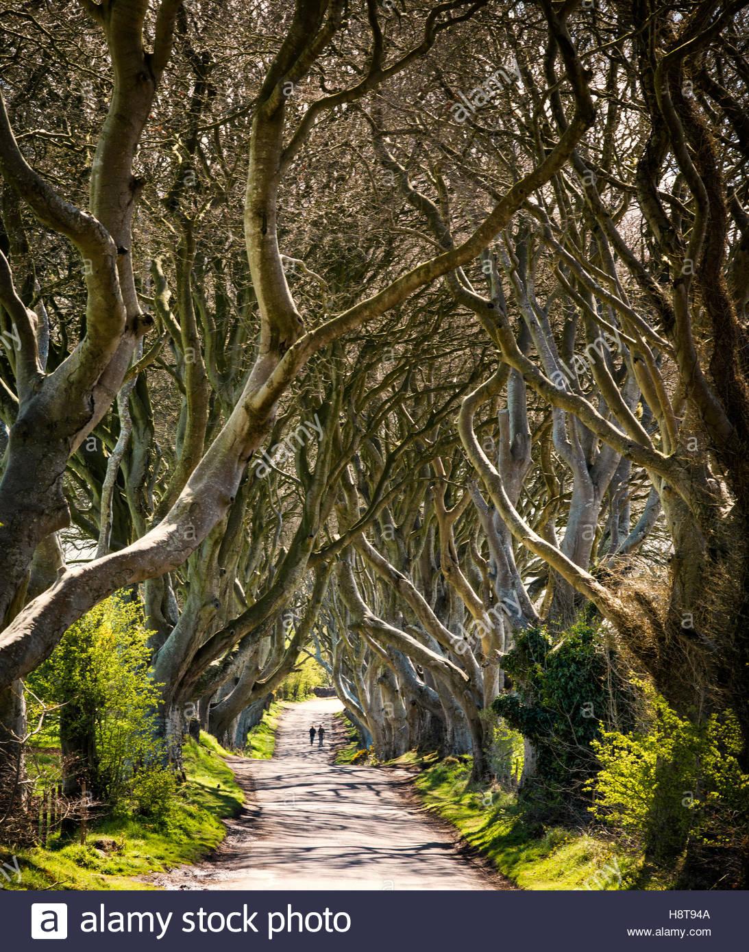 Spiel der Throne Lage der dunklen Sicherungsgeschäfte in Nordirland. Stockbild