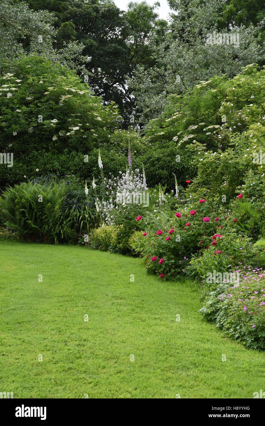 Shandy Hall Garden - Rasen eingefasst mit informellen Sommer krautige Pflanzen, Sträucher und Woodland Kulisse. Stockbild