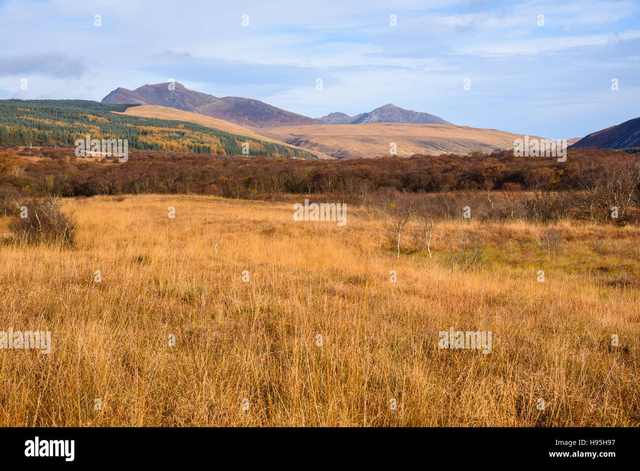 Machrie Moor Steinkreise, Isle of Arran, North Ayrshire, Schottland Stockbild