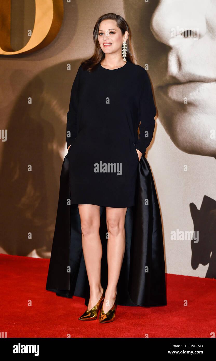 London, UK. 21. November 2016. Marion Cotillard besucht die Premiere der Alliierten im Odeon am Leicester Square, Stockbild