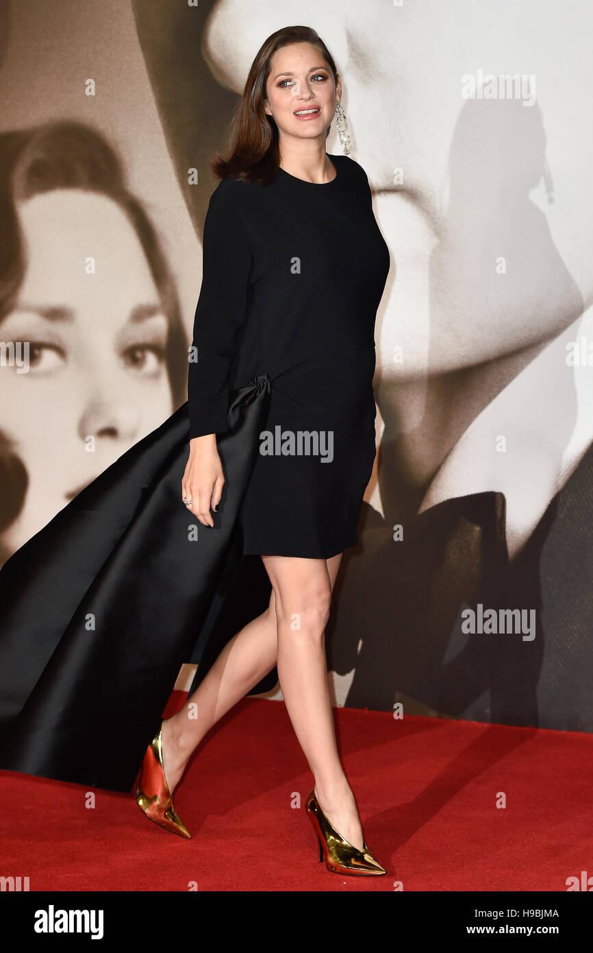 London, UK. 21. November 2016. Marion Cotillard besucht die Premiere der Alliierten im Odeon am Leicester Square, Stockfoto