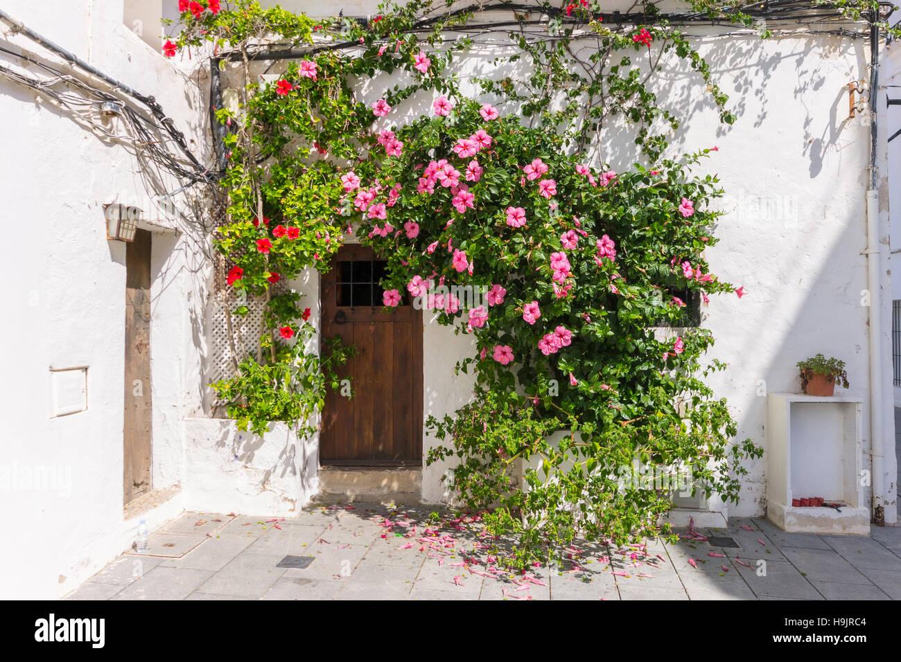 Spanien, Balearen, Ibiza, Eivissa, Altstadt Dalt Vila Stockbild