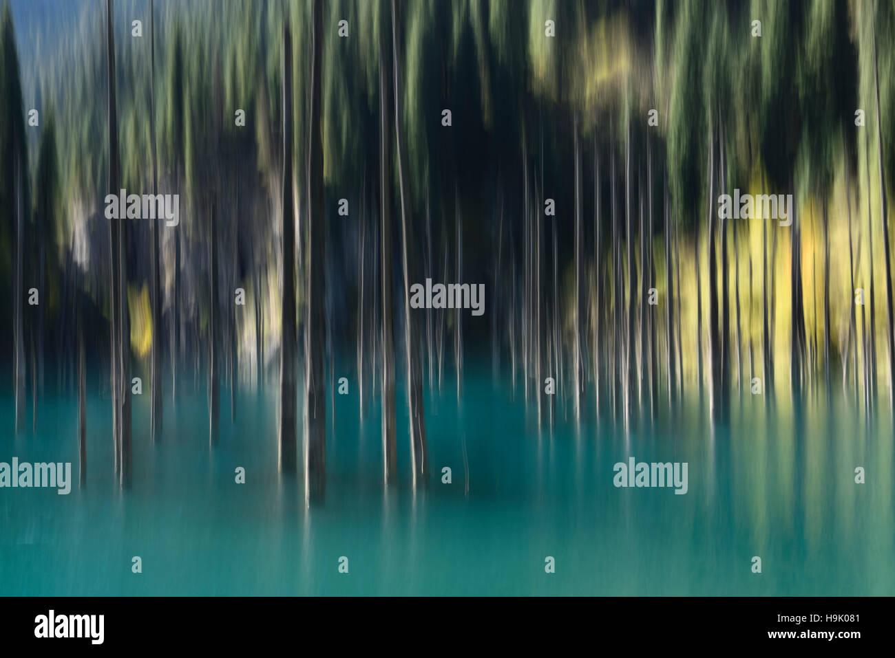 Verschwommene Bäume der türkisfarbenen See Kaindy Kasachstan im Herbst Stockbild