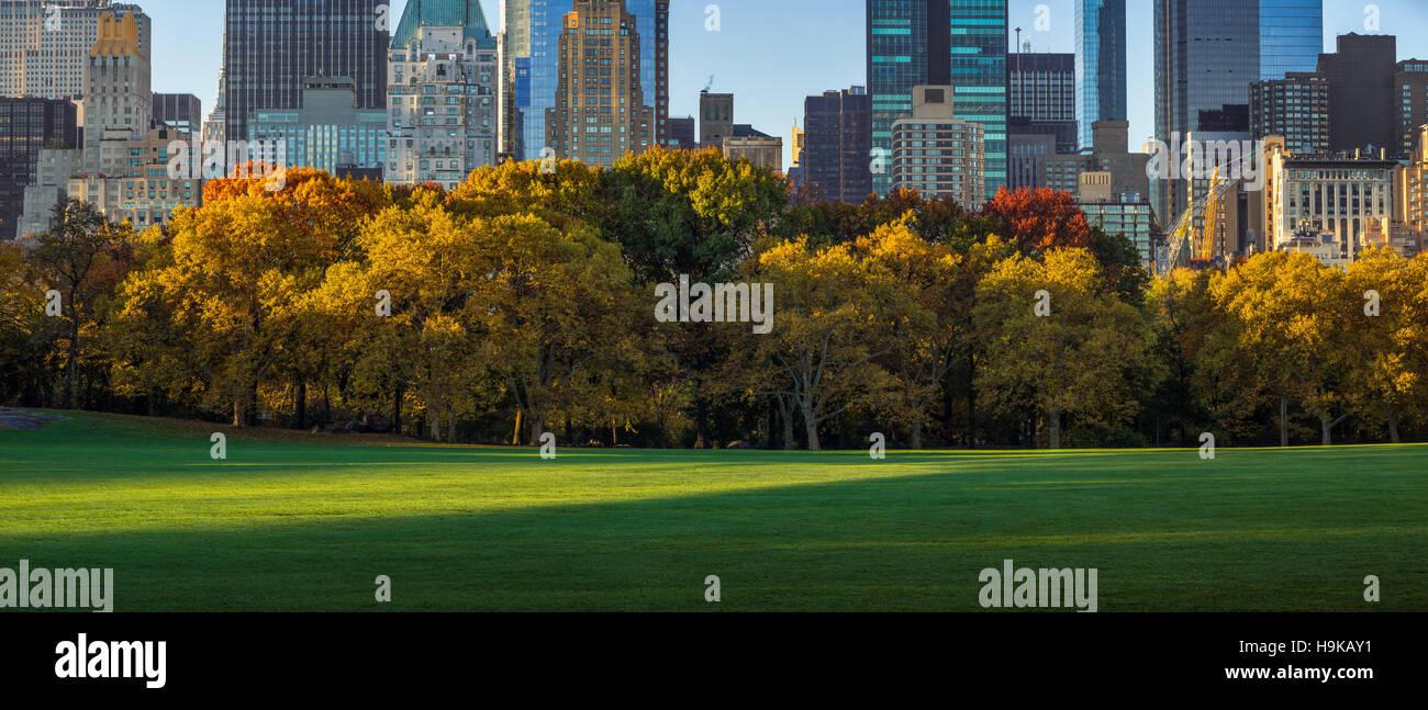 Central Park Sheep Meadow mit voller Herbstfarben. Midtown Manhattan Wolkenkratzer im frühen Morgenlicht. New Stockbild