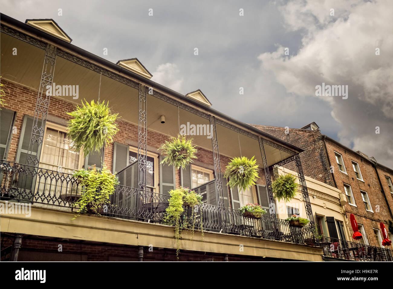 Altbau Mit Balkon Mit 4 Hangepflanzen Im French Quarter Von New