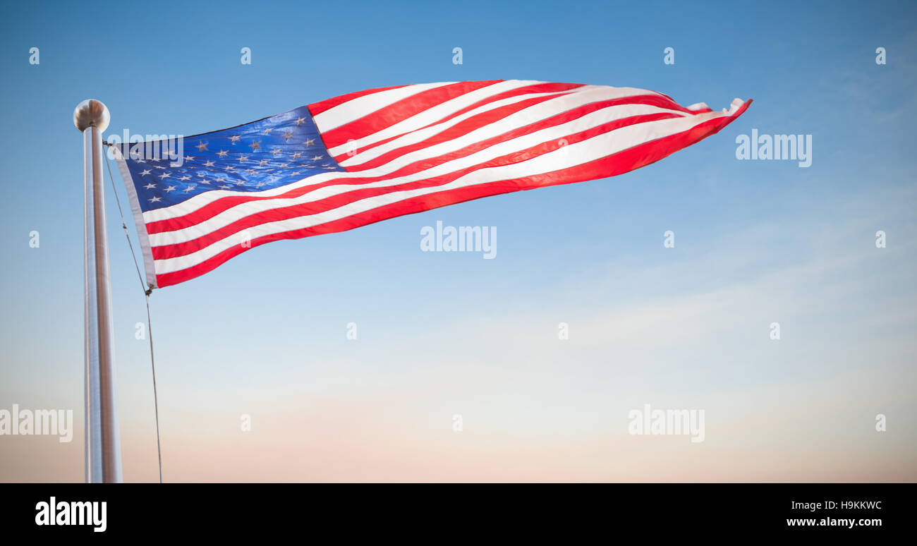 Striped Sea Star Stockfotos & Striped Sea Star Bilder - Alamy