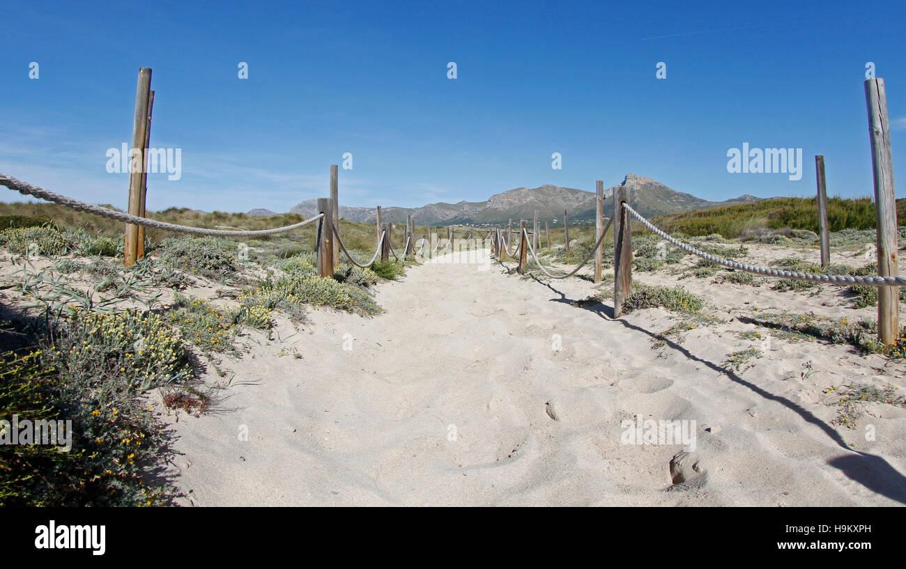 Sandy-Gebiet mit Dünen am Strand Stockbild