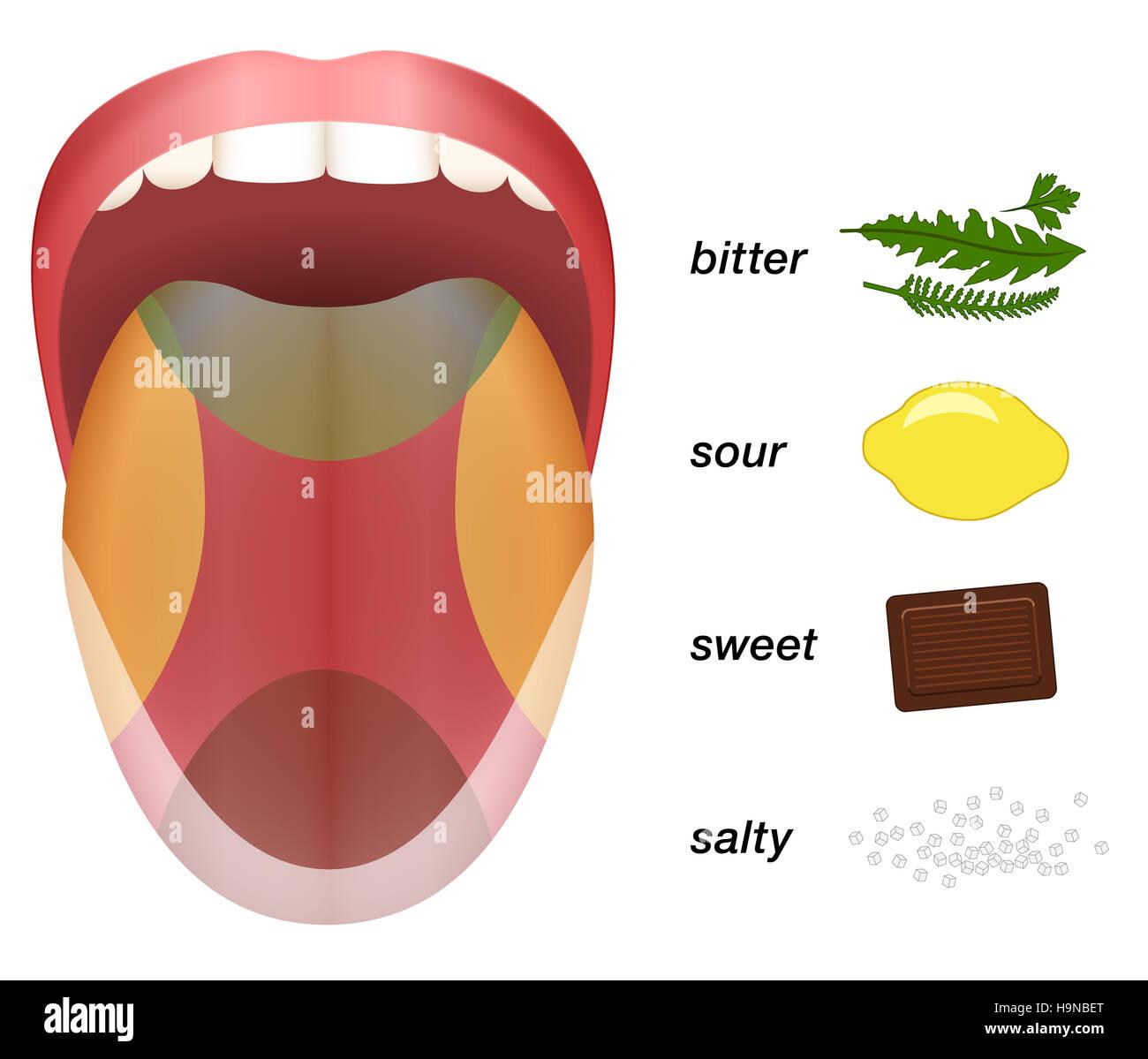 bitter sauer s und salzig geschmack durch kr uter zitronen schokolade und salzk rner auf. Black Bedroom Furniture Sets. Home Design Ideas