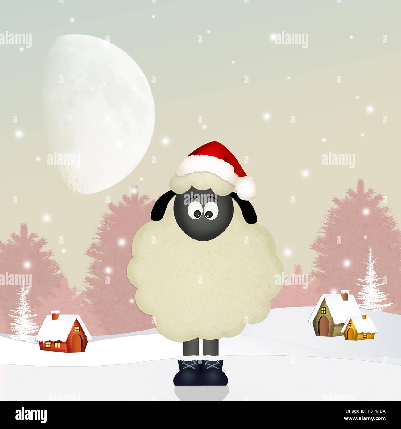 Lustige Schafe zu Weihnachten Stockfoto, Bild: 126503478 - Alamy