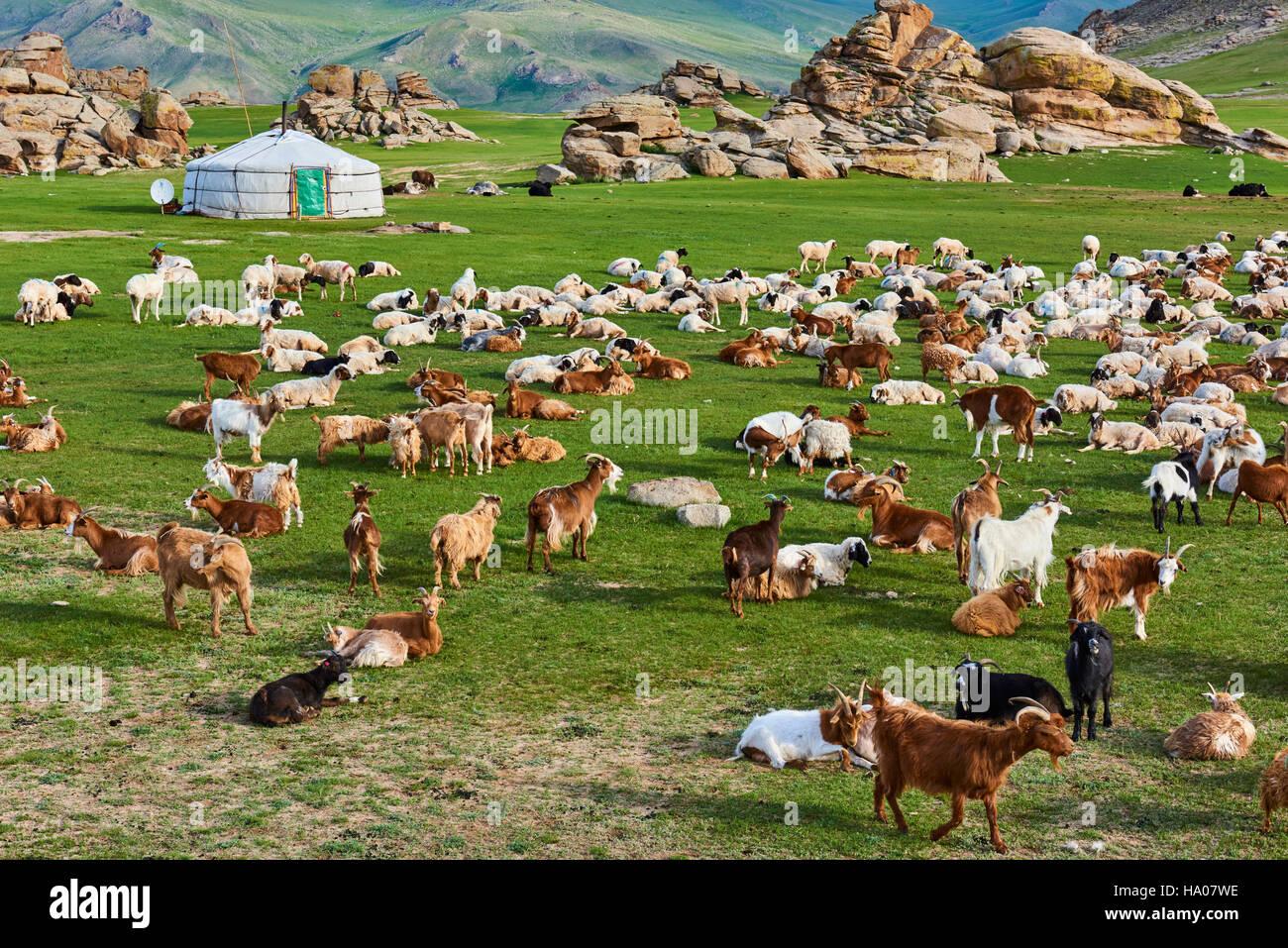 Mongolei, Bayankhongor Provinz, Nomadencamp Stockbild