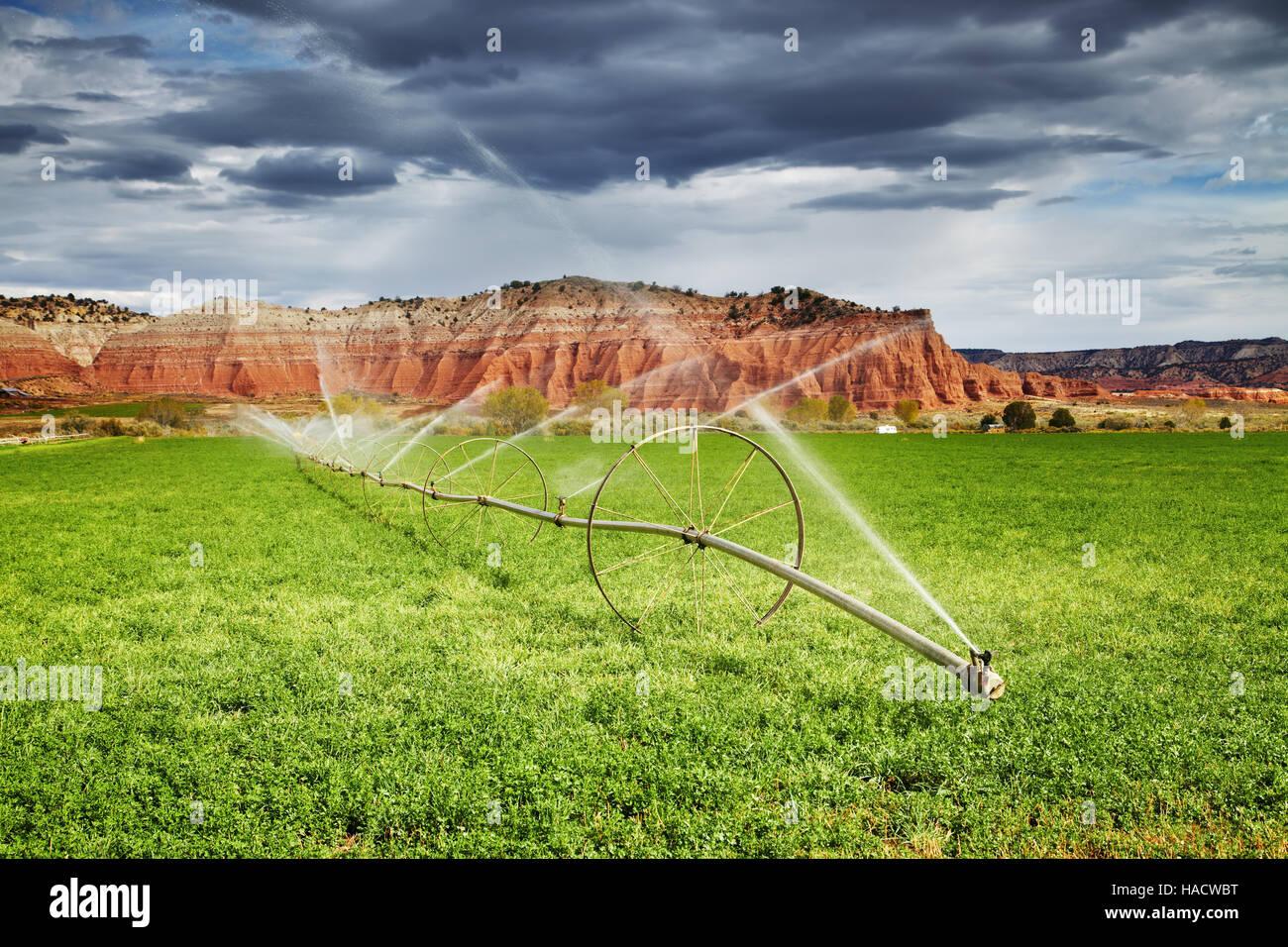 Bewässerungslandwirtschaft in Wüste, Bauernhof in Utah, USA Stockbild