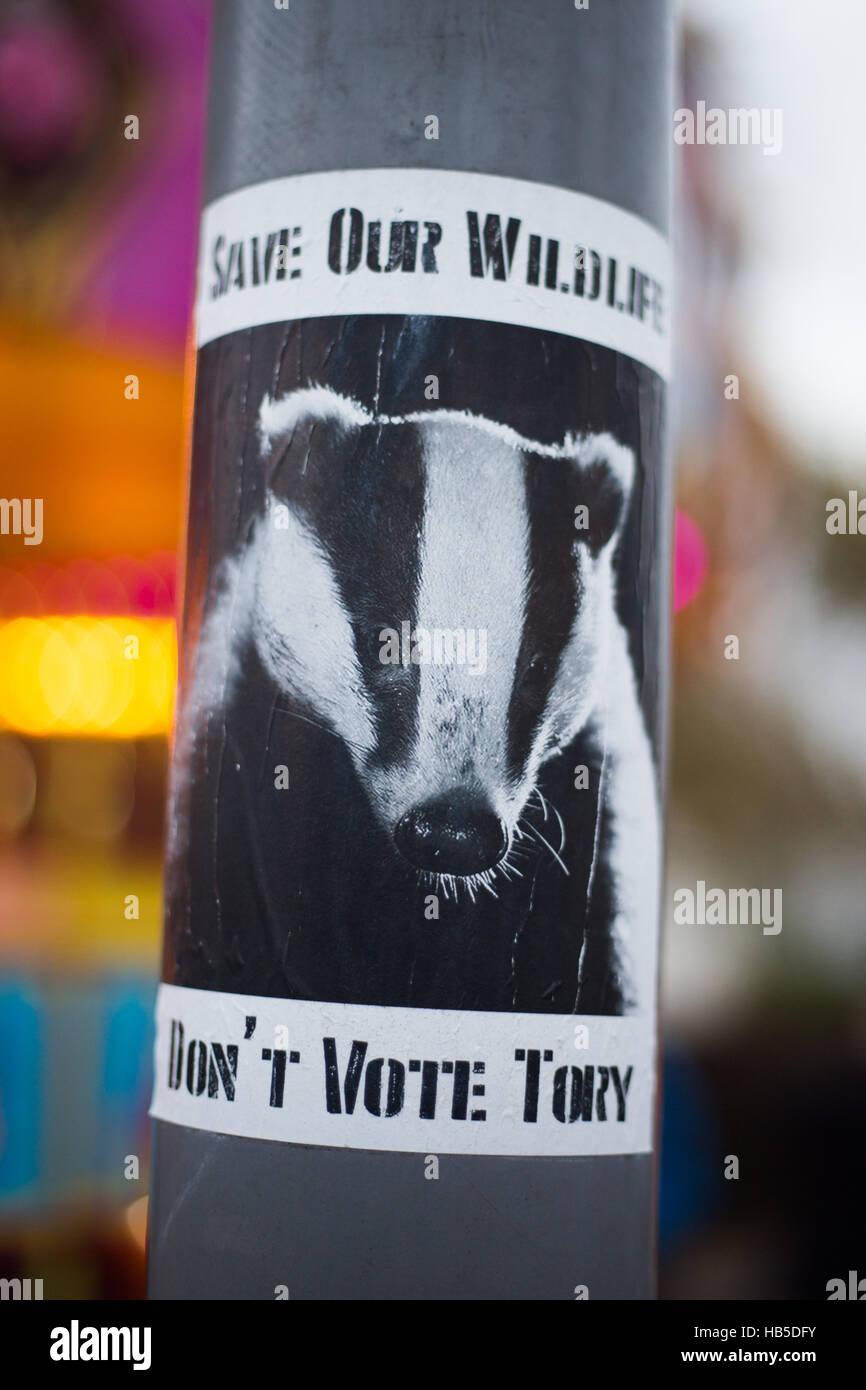 Retten Sie unsere Tiere zu, stimmen Sie keinen Laternenpfahl Tory Plakat ab Stockbild