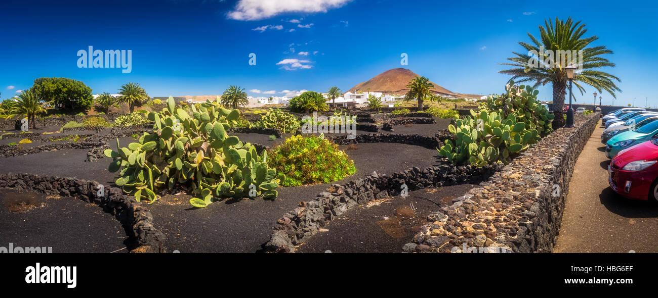 Lanzarote-Landschaft Stockbild