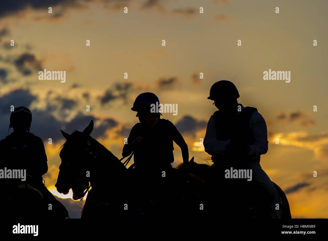 Wettbewerbsfähige Pferderennen Stockbild