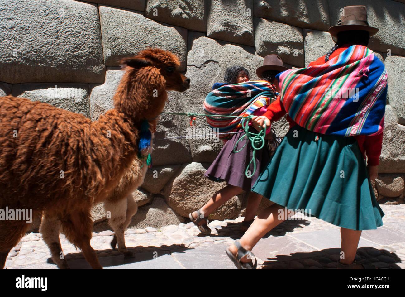 Eine Frau und ihre Lamas neben dem Stein 12 Winkel. Dieser Stein ist weithin bekannt, die Besonderheit, die sie Stockbild