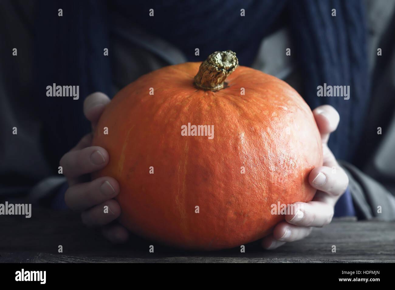 Orange Kürbis in der Hand horizontal Stockbild