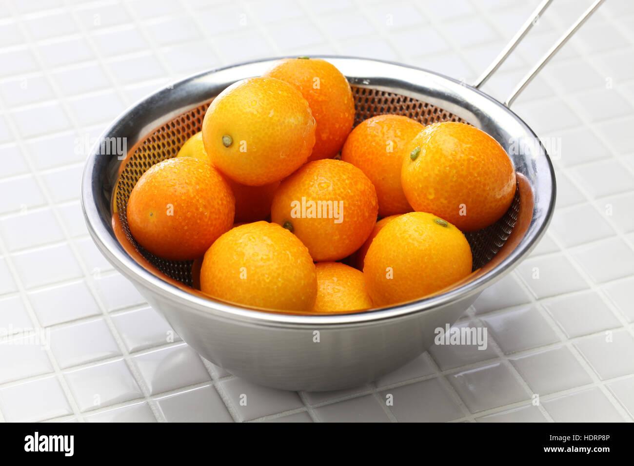 Kumquat in die Edelstahlschüssel Stockbild