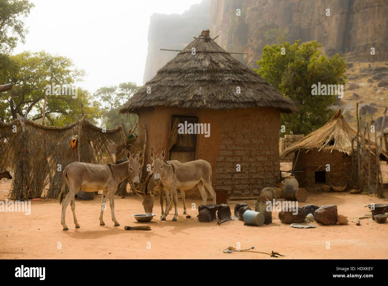 Dorf leben im ländlichen Mali, Stockbild