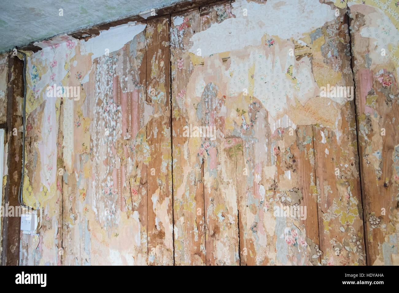 Basteln, Dekorieren Mein Eigentum Haus In West Wales.Removing Schaben Tapete  Von Wänden Und Decken.