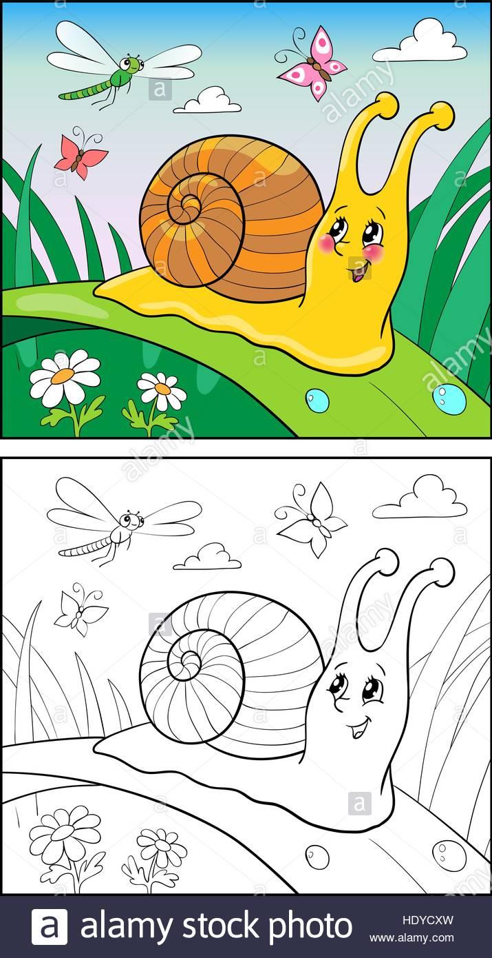Beste Realistische Schnecke Färbung Seite Ideen - Malvorlagen-Ideen ...