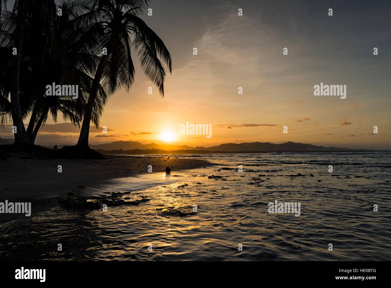 Blick auf einen Strand mit Palmen bei Sonnenuntergang in Puerto Viejo de Talamanca, Costa Rica, Zentralamerika; Stockbild