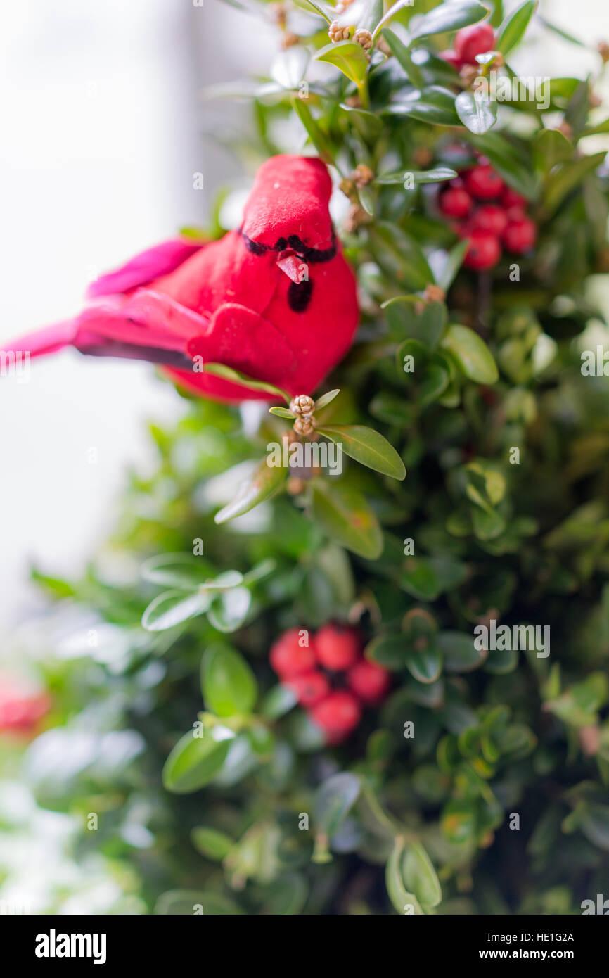 roter kardinal vogel dekoration am weihnachtsbaum. Black Bedroom Furniture Sets. Home Design Ideas