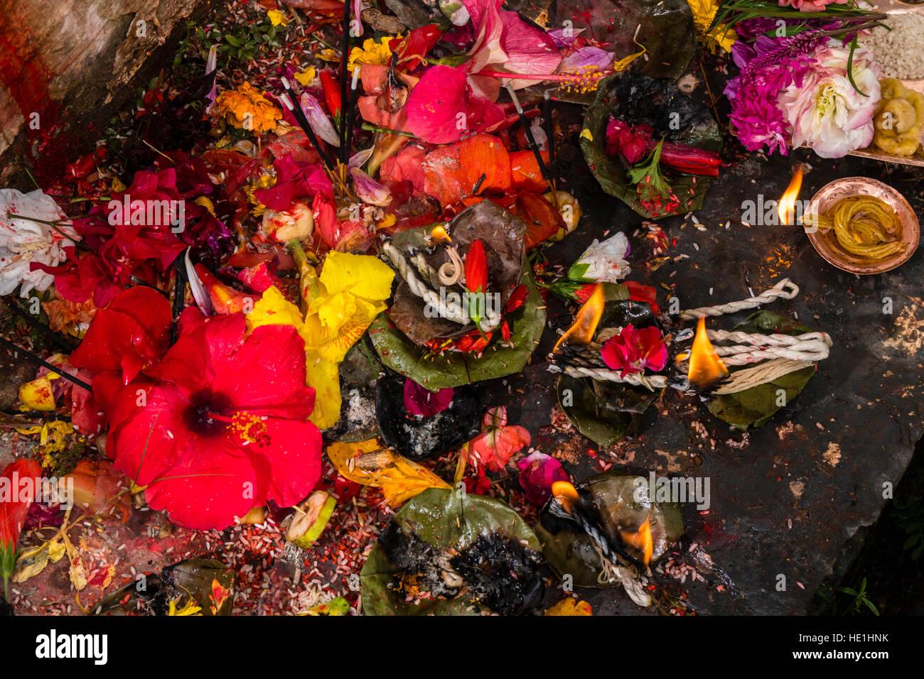 Blumen, Farbe Pulver, Früchte, Blätter, Reis und incence Sticks sind ...