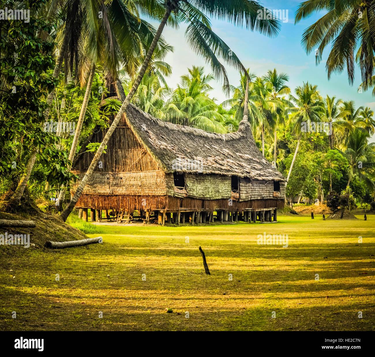 gro es haus aus stroh und holz umgeben von viel gr n in palembe sepik fluss in papua neuguinea. Black Bedroom Furniture Sets. Home Design Ideas