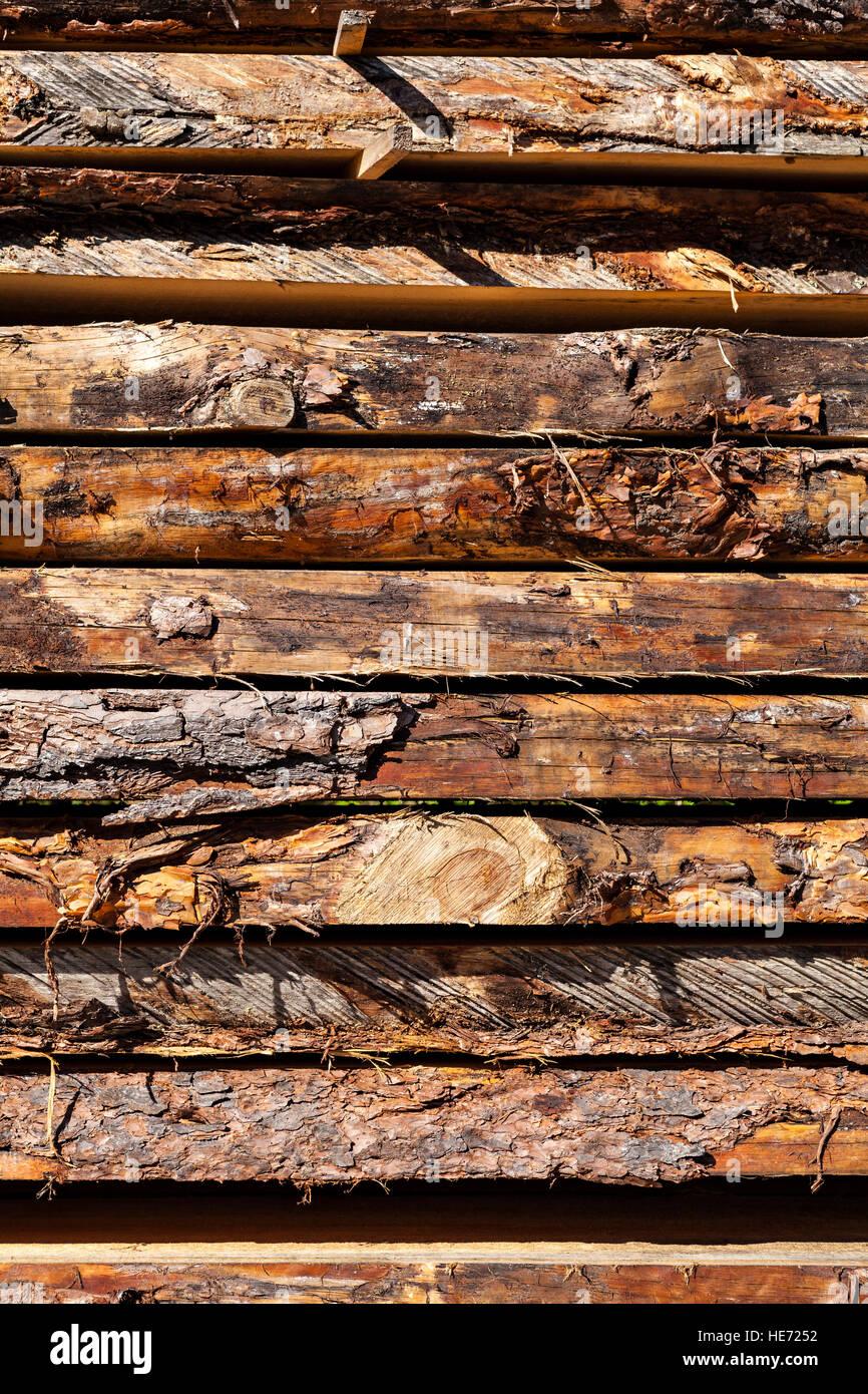 Nahaufnahme von frischen Holzbrett im Sägewerk. Stockfoto