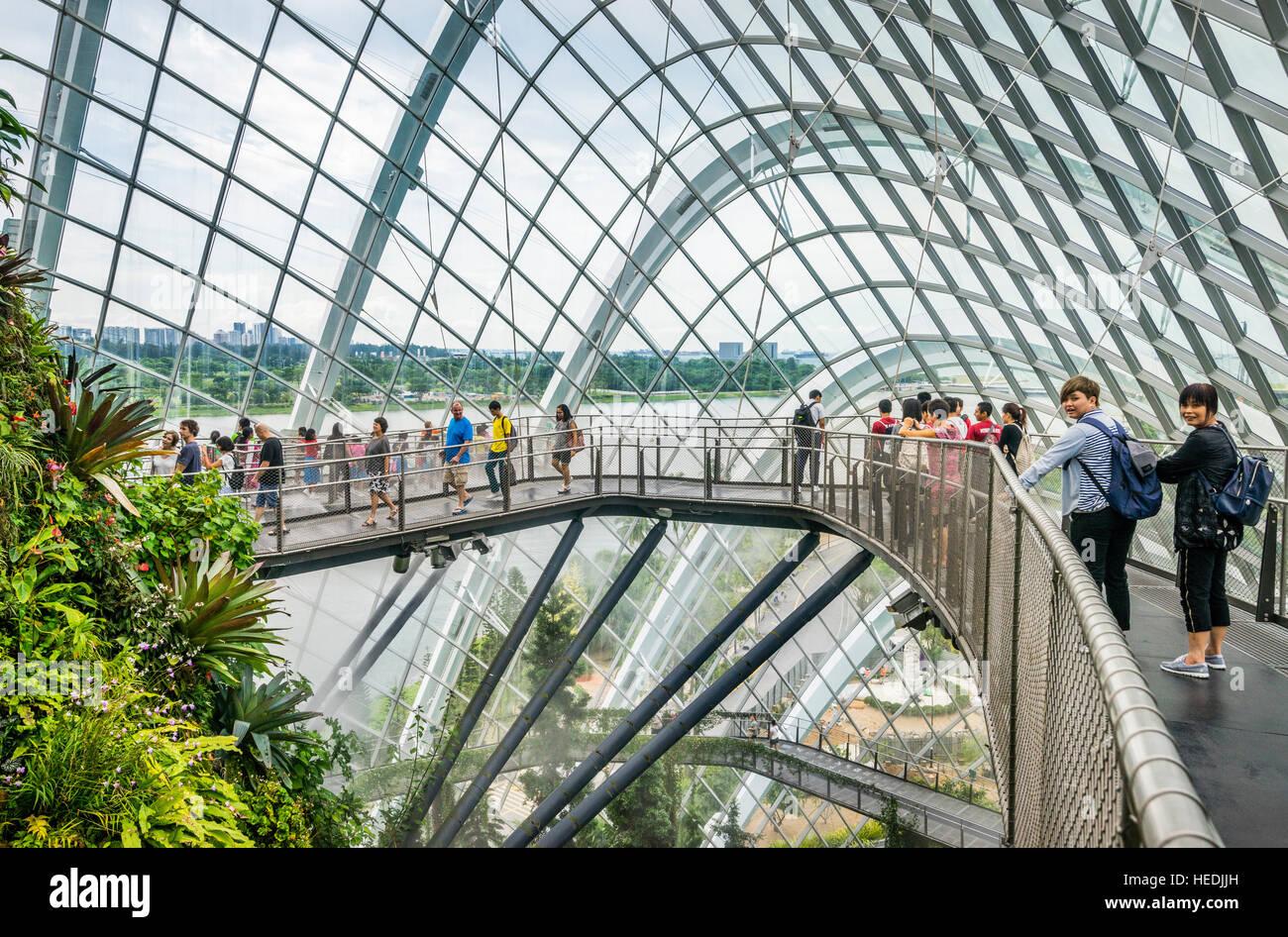 Singapur, Gärten an der Bucht, Cloud zu Fuß oben auf dem Berg von üppiger Vegetation innerhalb der Stockbild