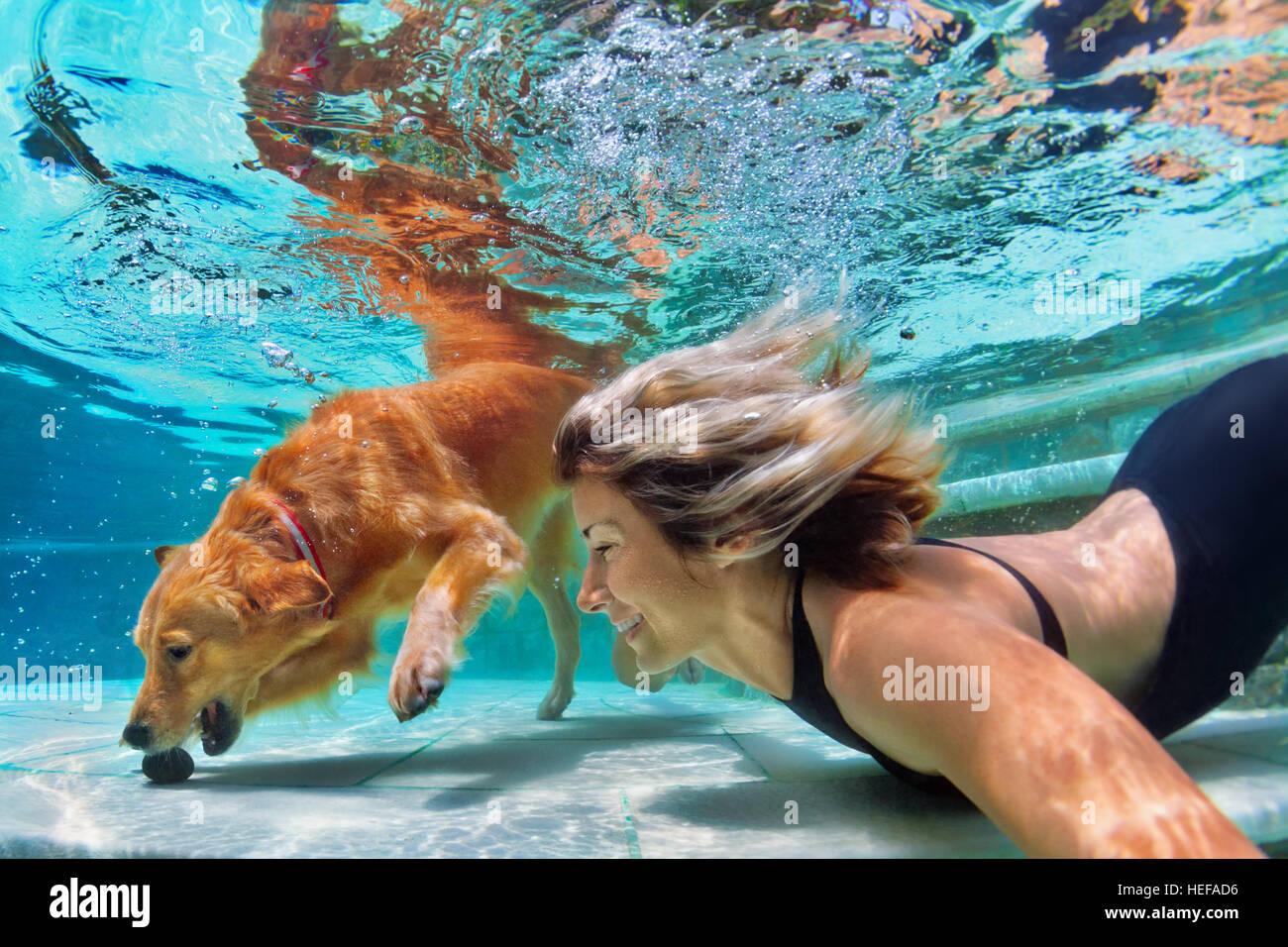 Smiley Frau Mit Lustigen Spielen, Training Golden Retriever Welpe Im Pool    Springen Und Tauchen. Aktive Wasserspiele Mit Haustier