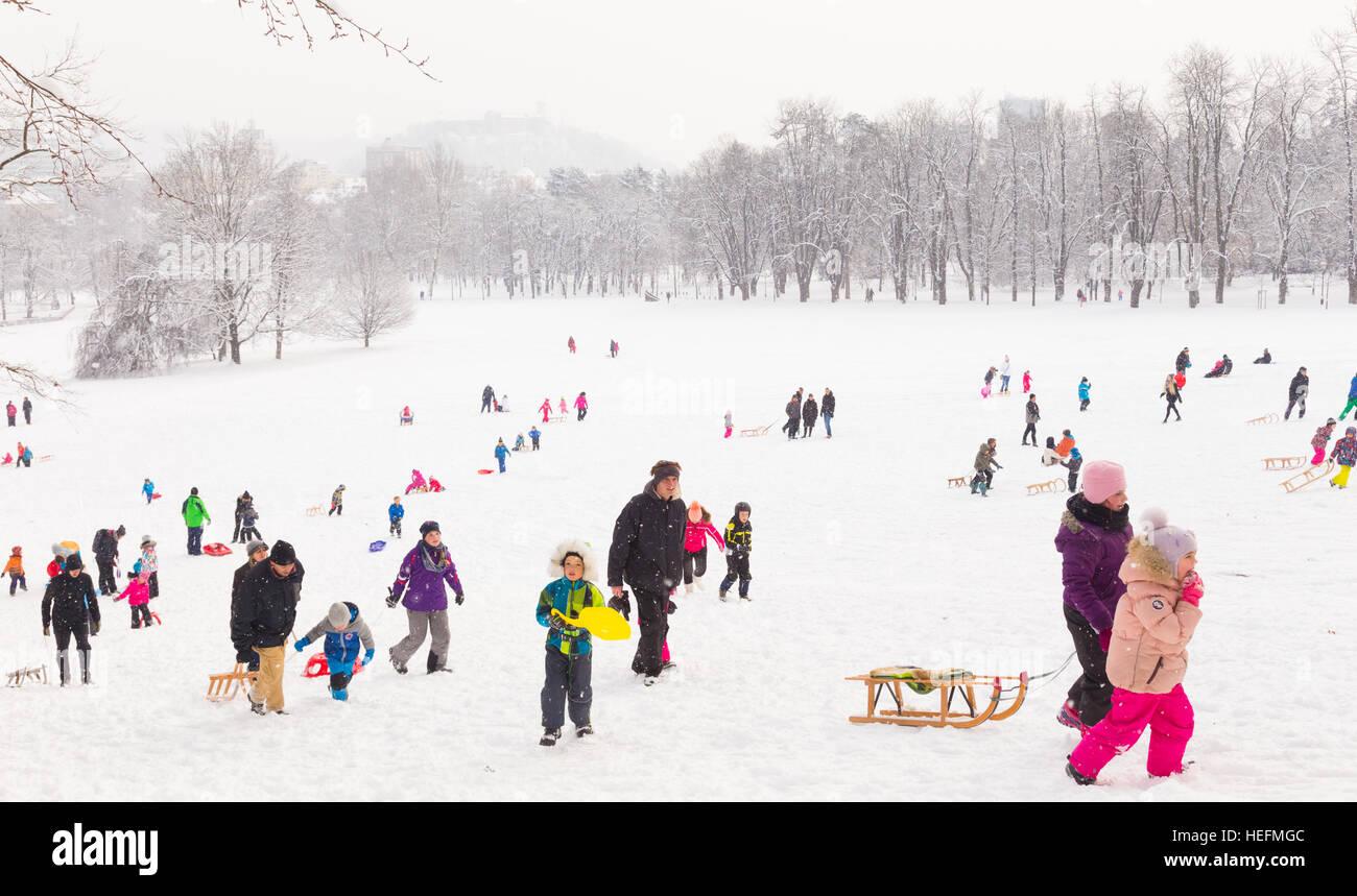 Winter, Schnee, Spaß, Familie Rodeln im Winter. Stockbild