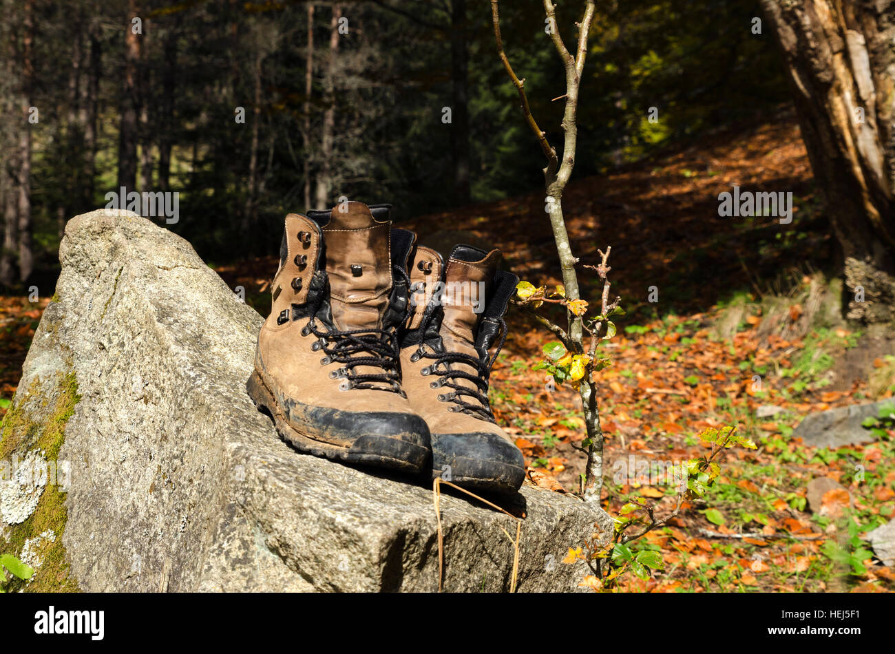 hiking boot old stockfotos hiking boot old bilder alamy. Black Bedroom Furniture Sets. Home Design Ideas