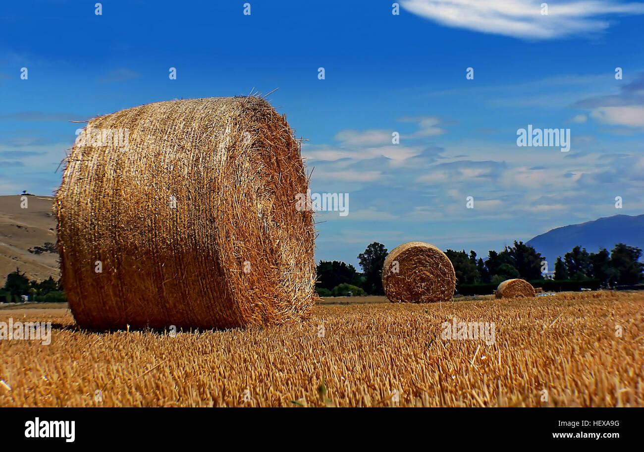 Gek Op Hay : Korting op een design klassieker van hay bij flinders