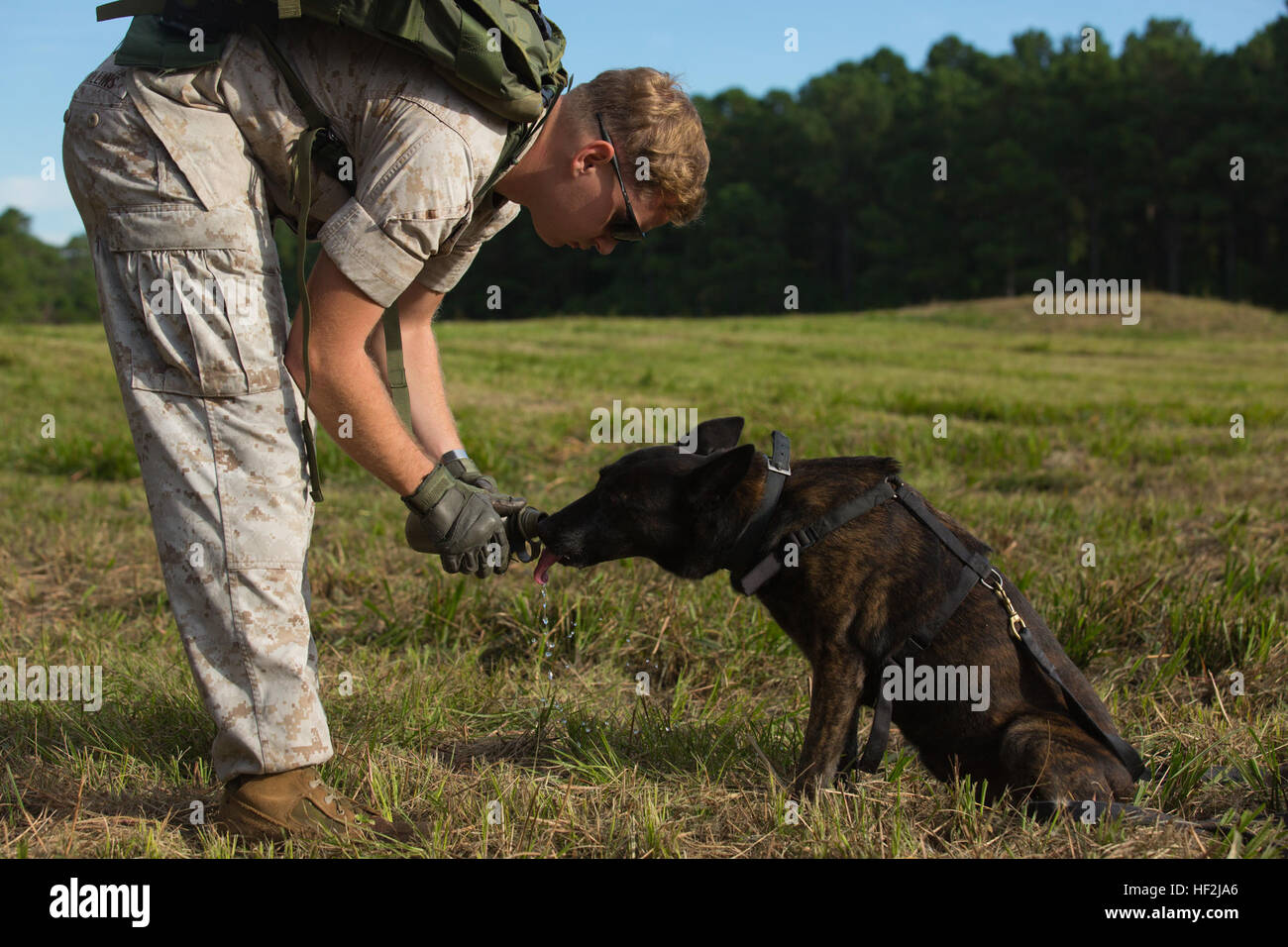 Bau- & Konstruktionsspielzeug-Sets Patrouille Hunde Bau/Aufbau
