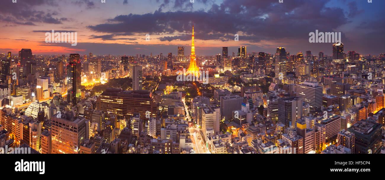 Panorama auf die Skyline von Tokyo, Japan mit dem Tokyo Tower in der Dämmerung fotografiert. Stockbild