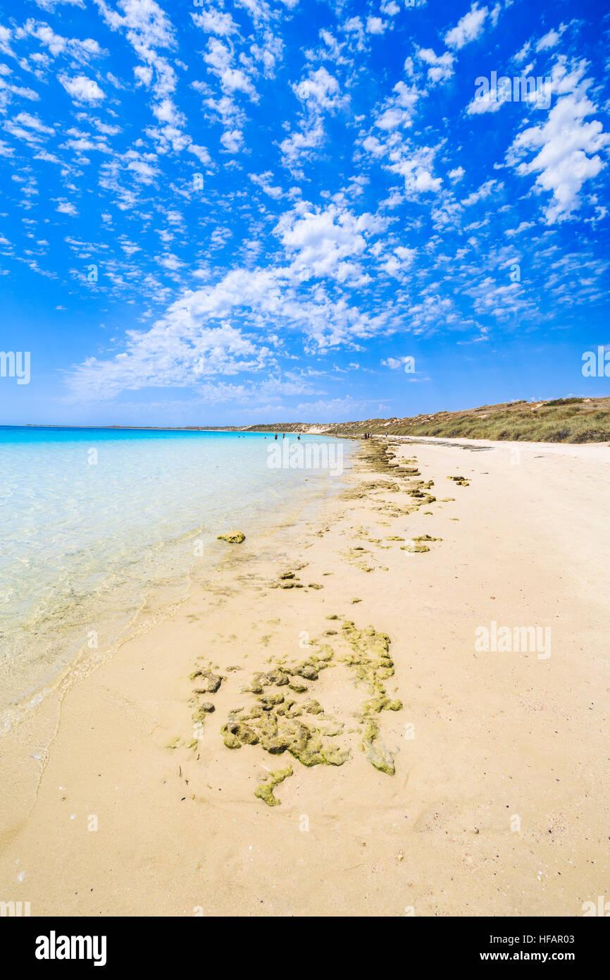 Coral Bay Strand Stockbild
