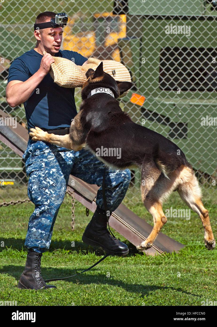 Arbeiten Auf Hawaii jimmy kontrolliert eine militärpolizei arbeiten hund angriffe us