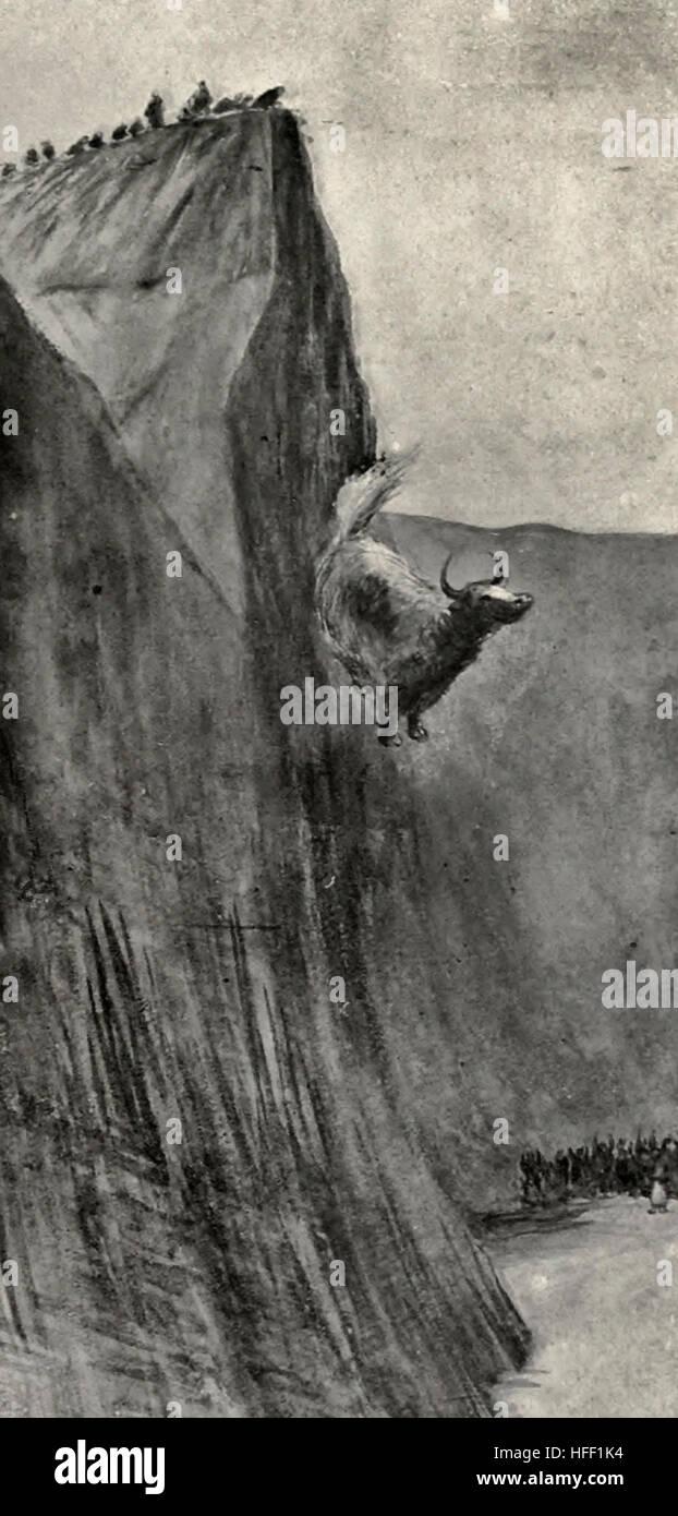 Jak angetrieben über den Abgrund Yak Opfer - Tibet, ca. 1899 Stockfoto