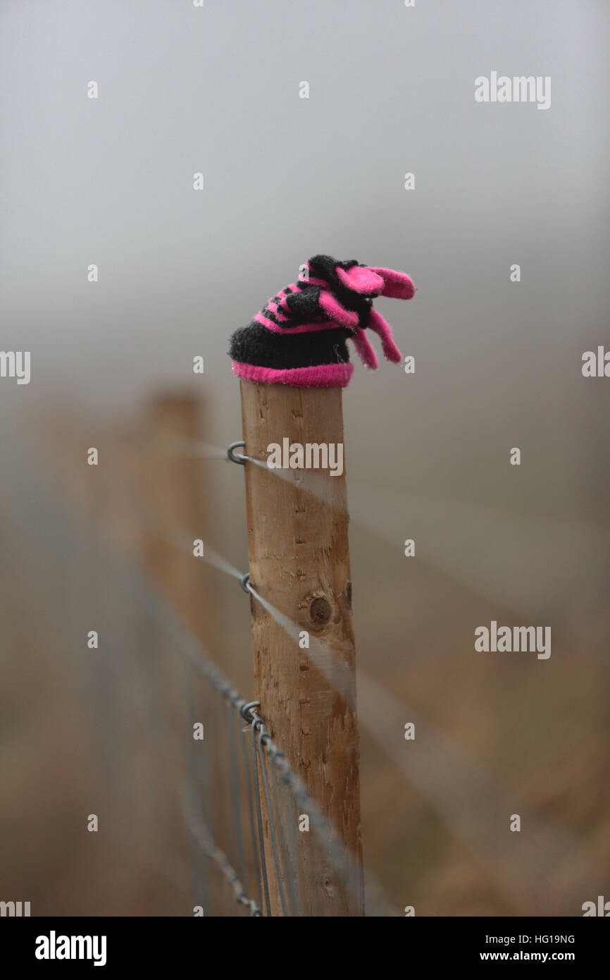 Ein einzelner verloren nassen Handschuh auf ein Land Zaun im Nebel. Stockbild