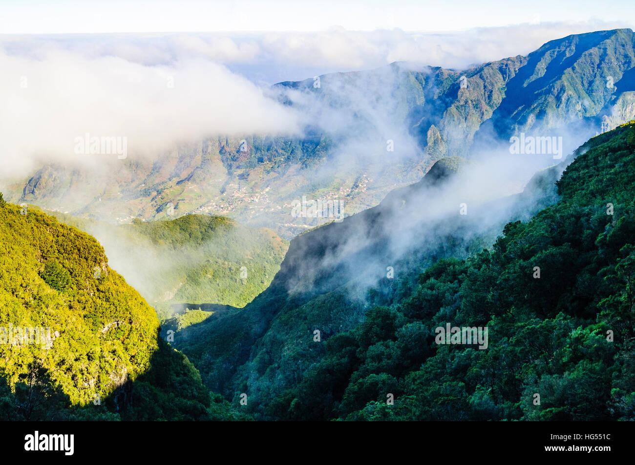 World Heritage Lorbeerwald (Laurisilva) Umhänge viel von der nördlichen Seite der Insel Madeira Stockbild