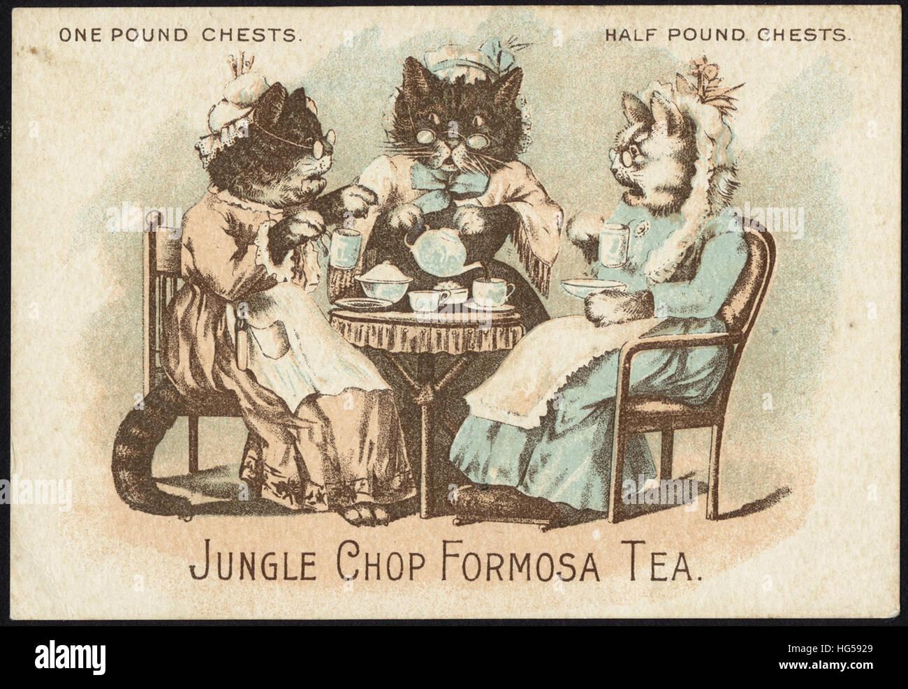 Getränke Handel Karten - ein Pfund Truhen. Halbes Pfund Truhen. Dschungel-Chop Formosa-Tee. Stockbild