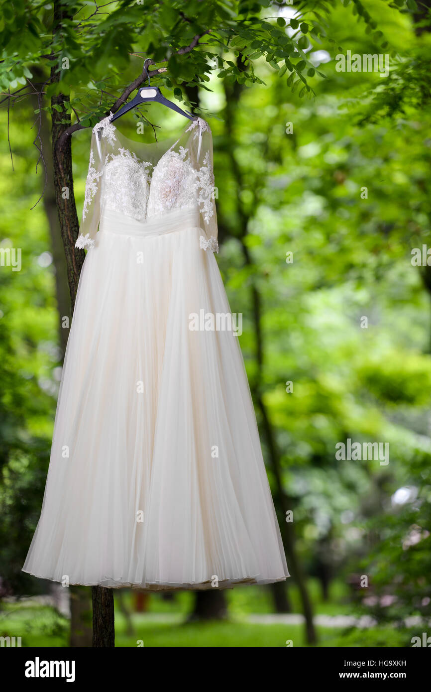 Dress Hanger Tree Stockfotos & Dress Hanger Tree Bilder - Alamy