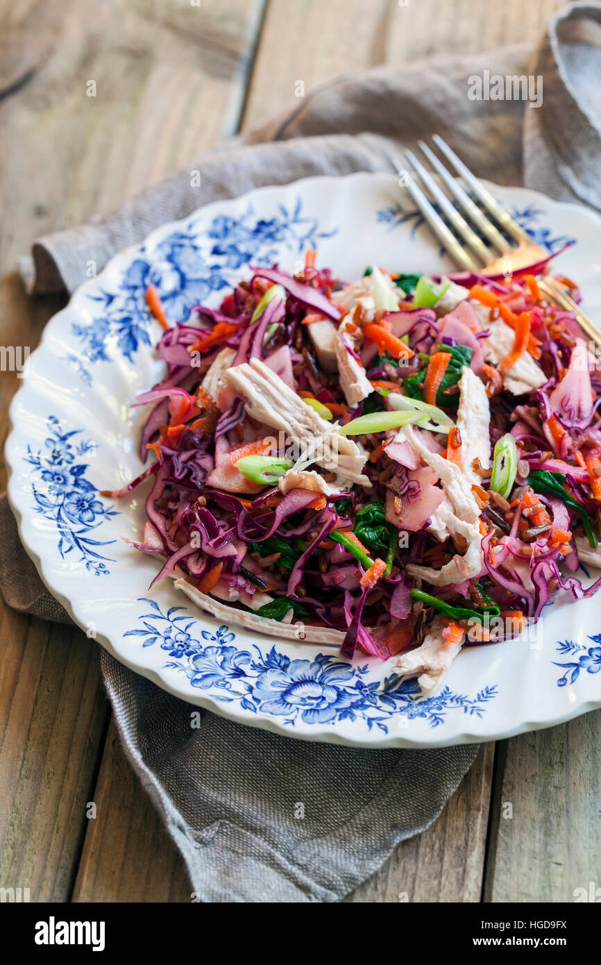 Salat mit übrig gebliebenen Türkei, Rotkohl, Äpfel und Karotten Stockbild