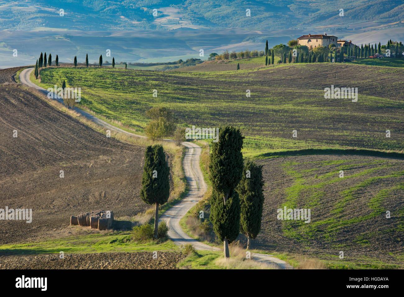 Gewundenen Feldweg führt zu Grafschaft Villa in der Nähe von Pienza, Toskana, Italien Stockbild
