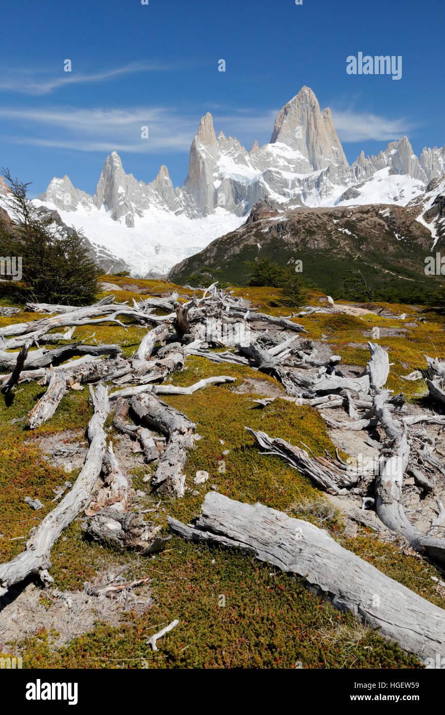 Blick auf den Fitz Roy im Laguna de los Tres Trail, El Chalten, Patagonien, Argentinien, Südamerika Stockbild
