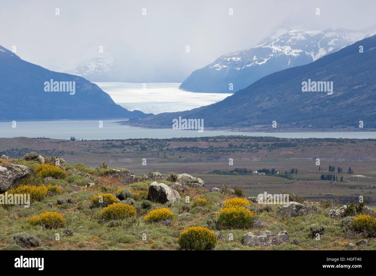 Perito Moreno-Gletscher am Lago Argentino, El Calafate, Parque Nacional Los Glaciares, Patagonien, Argentinien, Stockbild