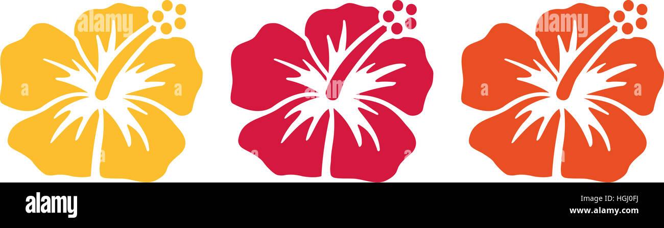 Hawaiian Flowers Stockfotos & Hawaiian Flowers Bilder - Alamy