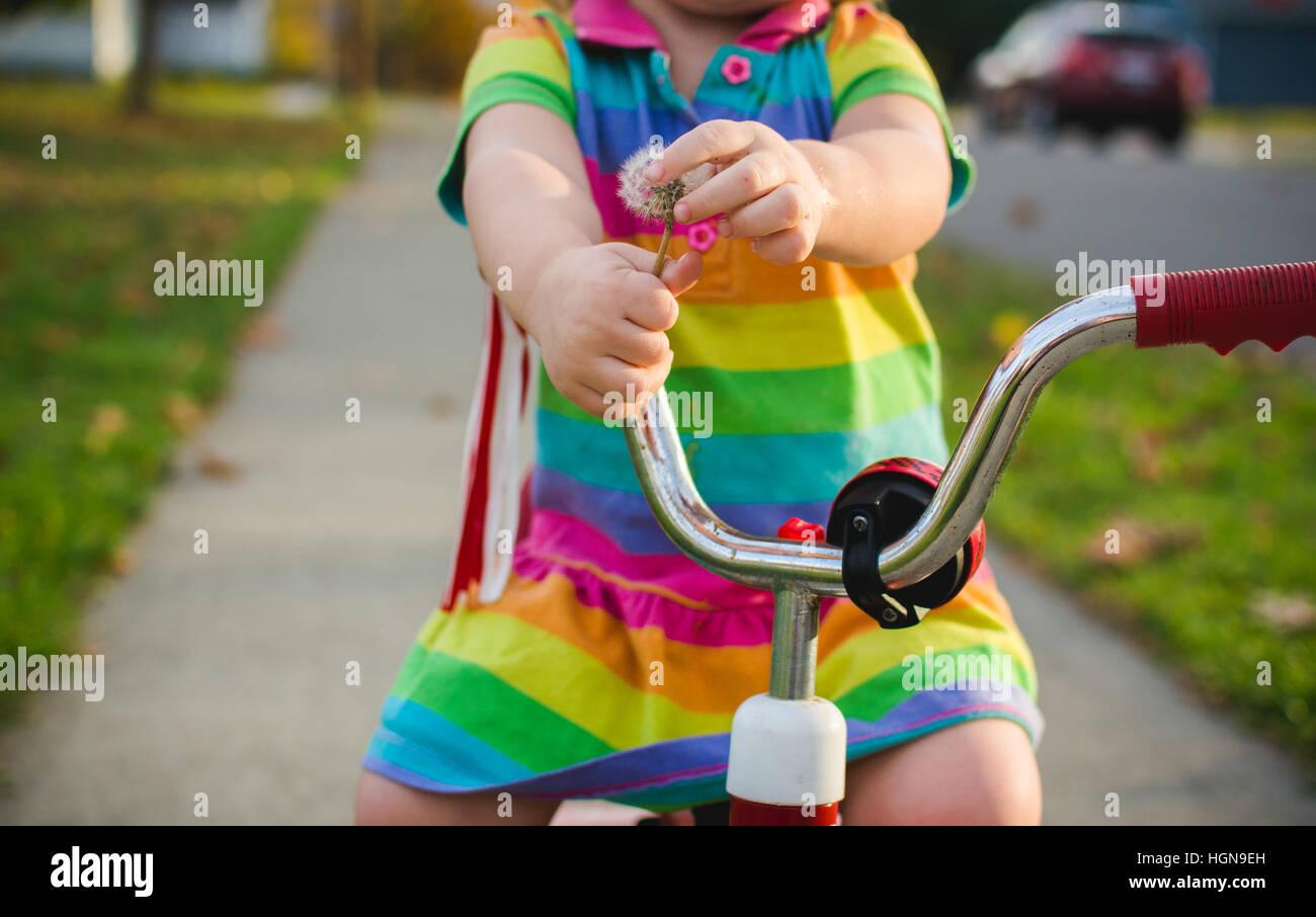 Ein Kind spielt mit einem Löwenzahn auf einem Dreirad. Stockbild
